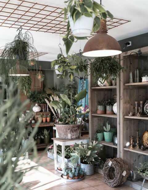 Bloemenwinkel Surhuisterveen - Friesland Lisa Faber